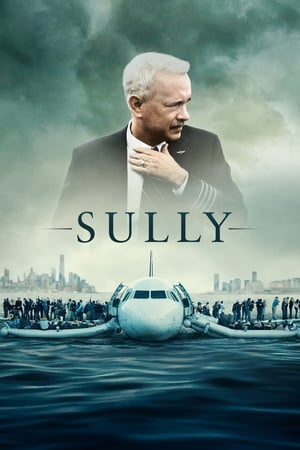Purchase Sully (DVD) on Oldies and Get 30% OFF!
